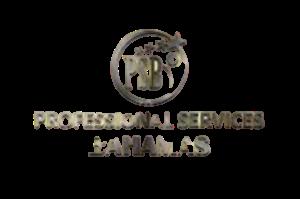 Professional Services Bahamas